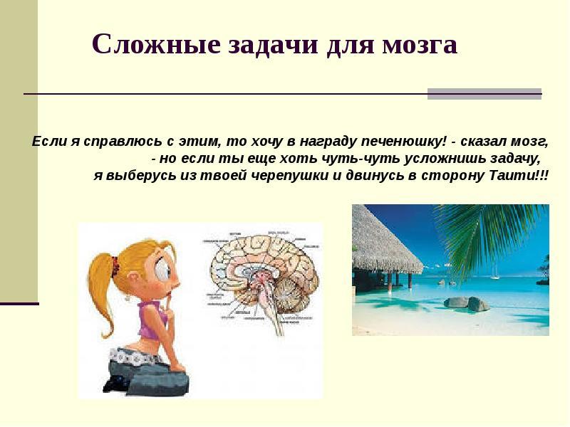 задание для мозга добавочная долька