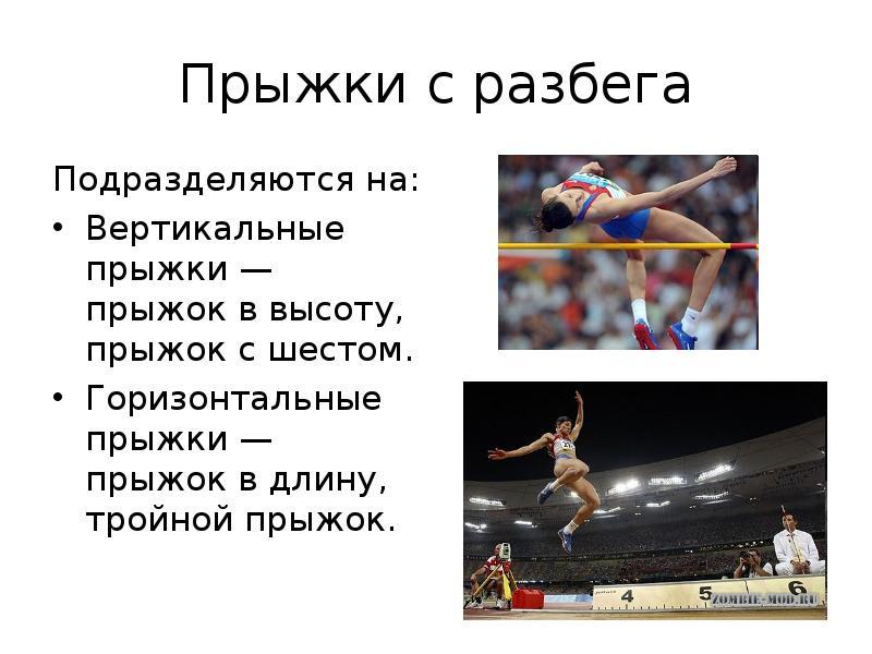 Реферат На Тему Легкая Атлетика Прыжки В Длину pigifeedk Реферат На Тему Легкая Атлетика Прыжки В Длину