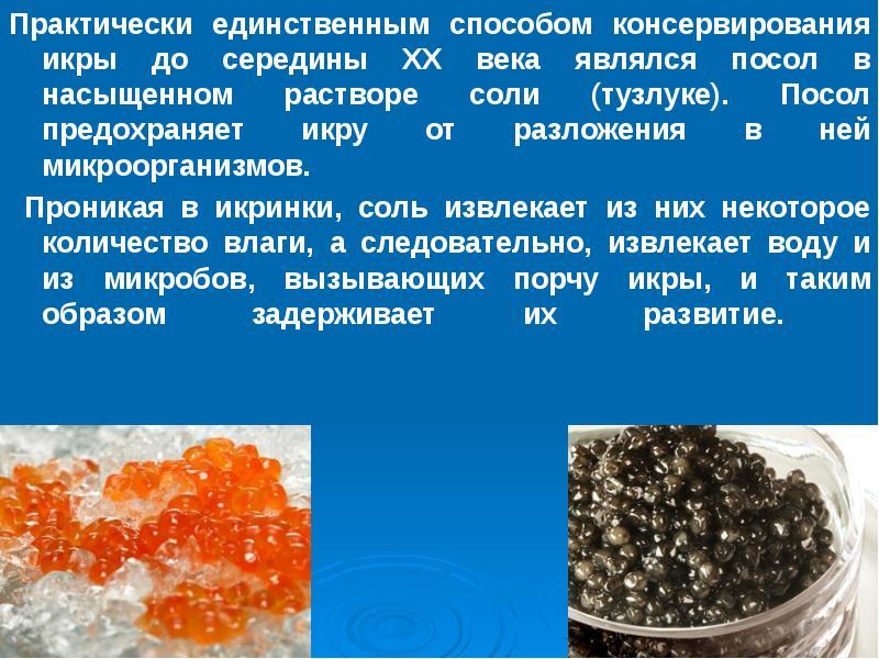 Мясо рыбы по химическому составу близко к мясу млекопитающих.