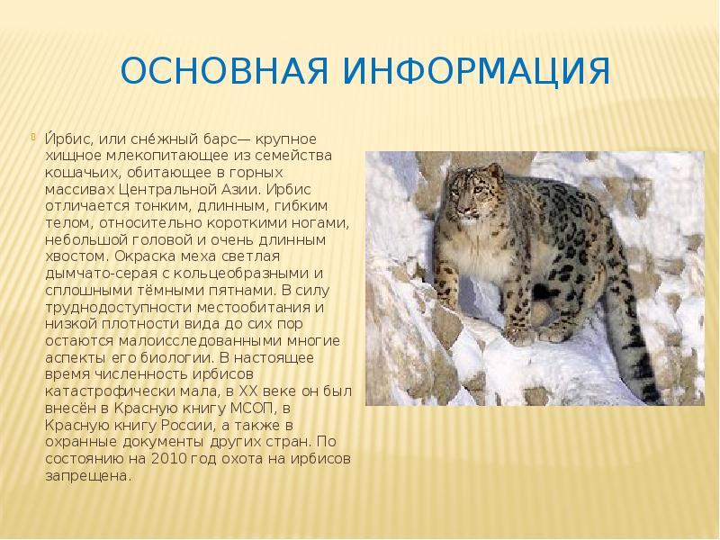 именно животные красной книги татарстана фото и описание популярность