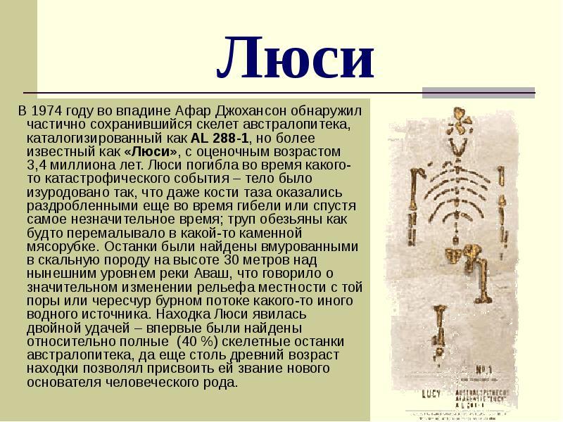 люси древний предок кто это бесплатно