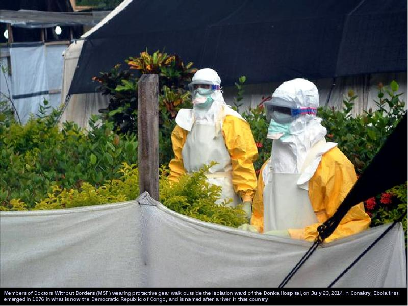 ebola outbreak essay The ebola outbreak in west africa is the world's deadliest to date and the world health organization has declared an international health emergency as more than 3,850 people have died of the virus.