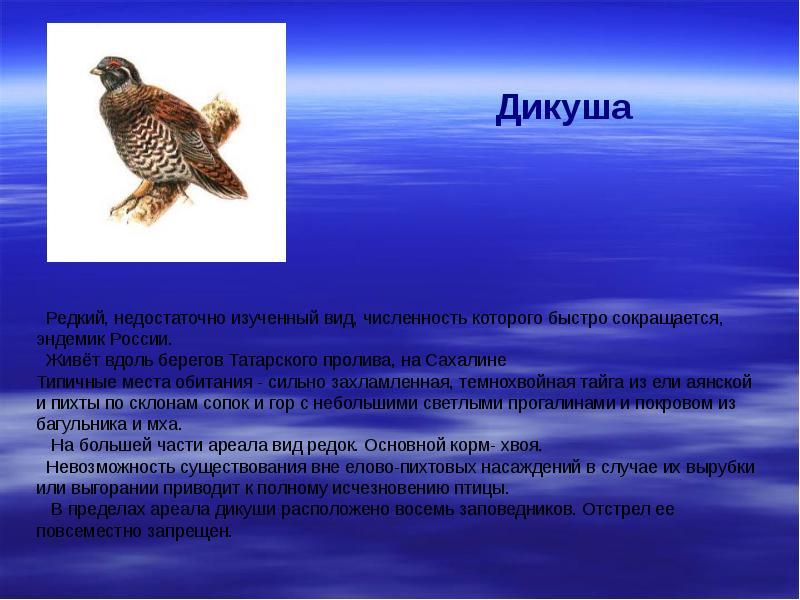 лайки эндемики россии животные и растения наш век