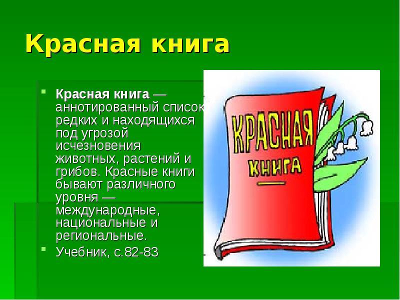 реферат о красной книге с картинками приготовить рагу свининой