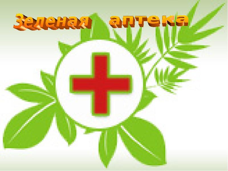 Зеленая аптека для детей в картинках, корзинками цветов