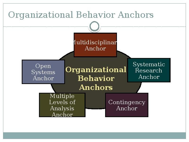 organizational behavior and the sociology of Macro organizational behavior (some­ times called organization theory) has roots in sociology, political science, and economics, and deals with questions of organizational structure, design, and.