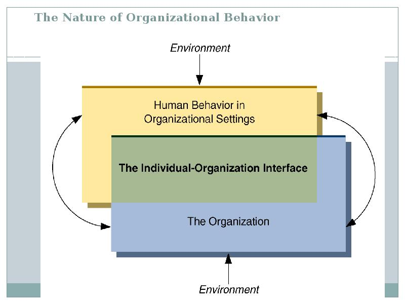 micro organizational behavior essay Let's begin to discuss and look at the effects of micro-organizational behavior within a corporation the effect associated with micro-organizational behavior as it applies to the military is that of minimal effects.
