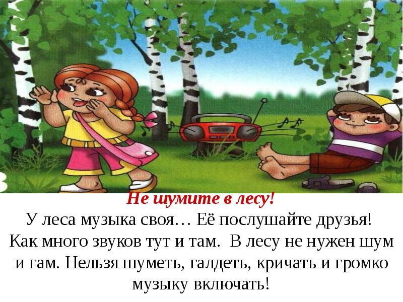 Картинка не шуметь в лесу