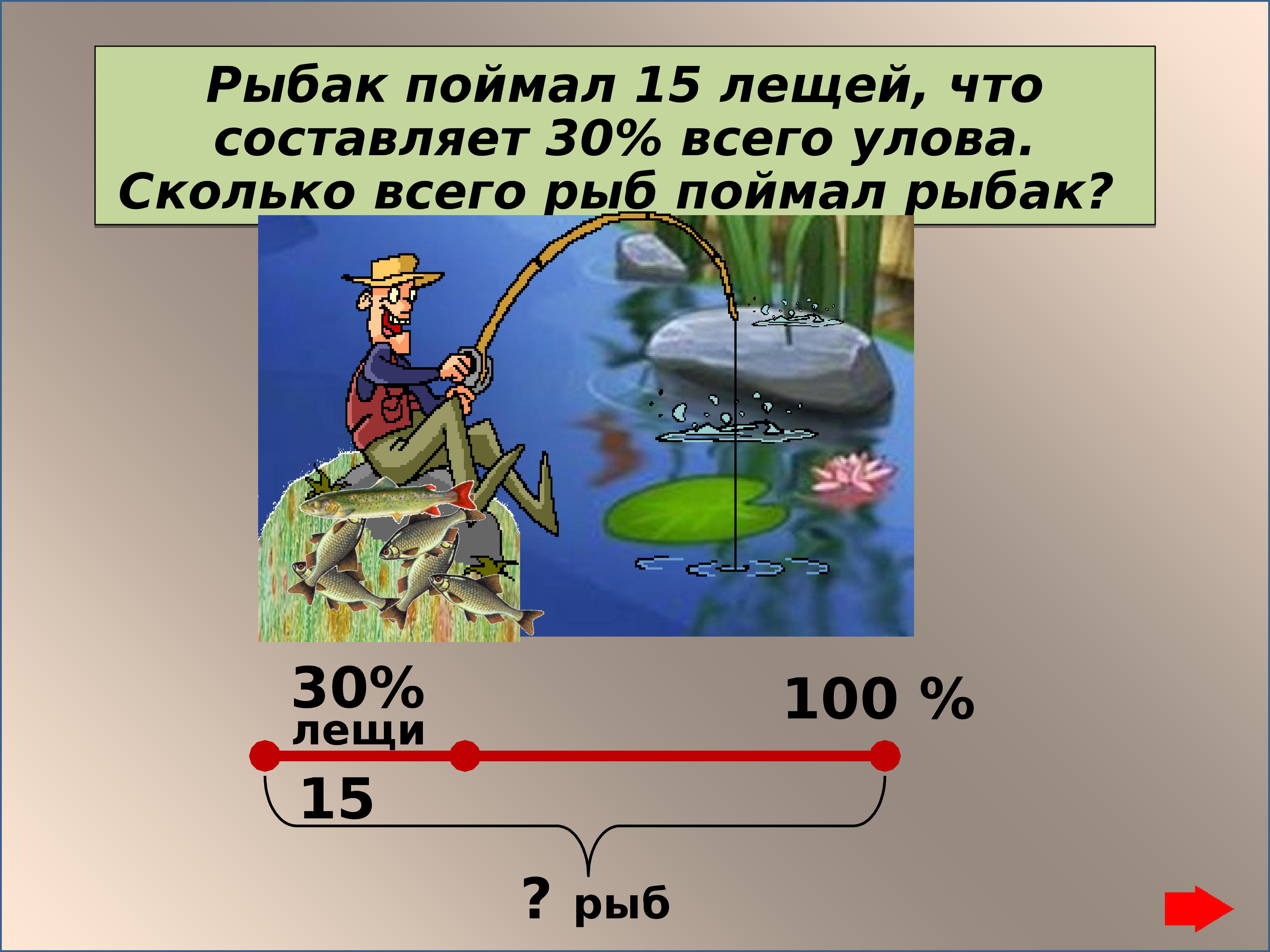 сколько процентов занимает суша